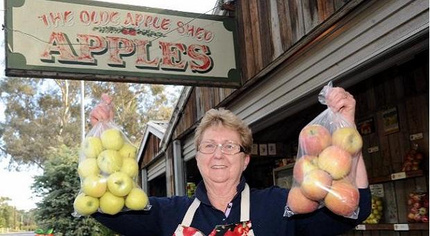 phân khúc kinh doanh bán táo